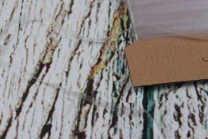 Gummiband - transparent 6 mm 100% Silikon