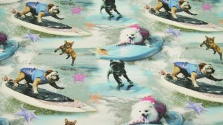 Jersey Surf Dogs