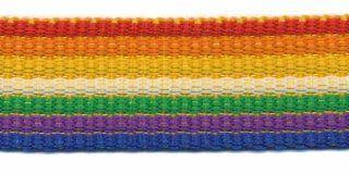 Gurtband - gestreift - 25 mm - Regenbogen